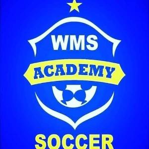 Escudo da equipe WMS Academy - Sub 15
