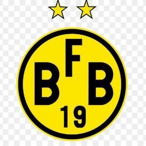 Escudo da equipe Borussia FB - Sub 17