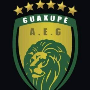 Escudo da equipe A.E. Guaxupé - Sub 11